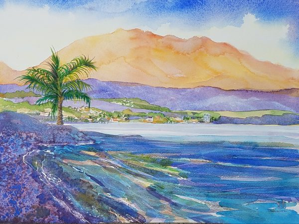 Mauna Kea 2019